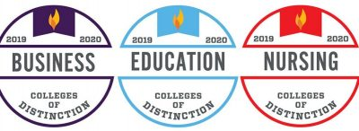 usf college of distinction