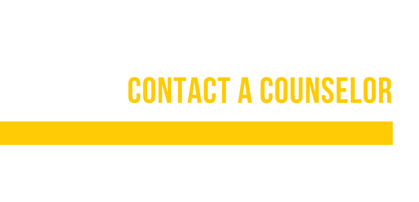 contact a usf admissions counselor